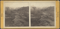 Ruins of Ticonderoga. The elm tree, said to stand where the covered way to the lake ran, by Stoddard, Seneca Ray, 1844-1917 , 1844-1917.png