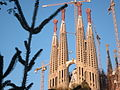 Sagrada Familia, Tree and spires.jpg