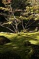 Saihoji Temple moss gardens, Kyoto (6290138882).jpg