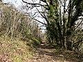 Saint-Amand-de-Coly causse Terrasson Pech Fourche.jpg
