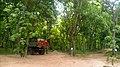 Saisie de madriers au cantonnement forestier de parakou.jpg