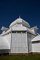 San Francisco Conservatory of Flowers-33.jpg