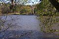 Scenic Lake Heflin.jpg