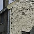 Schade aan rechter zijgevel - Veenhuizen - 20385459 - RCE.jpg
