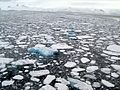 Sea ice Antarctica.JPG