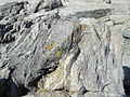 Sea point contact zone mixed rocks DSC06243.JPG