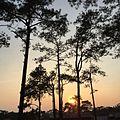Si Than, Phu Kradueng District, Loei 42180, Thailand - panoramio (11).jpg