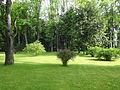 Siary zespół pałacowo-parkowy park nr A-201 (29).JPG