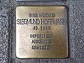 Siegmund Hoffmann.jpg