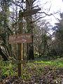 Signpost near Patchington - geograph.org.uk - 147437.jpg