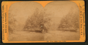Indian River (Alaska) - An 1890 photograph of a bridge over Indian River