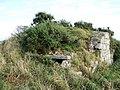 Skene mausoleum, Howff Wood - geograph.org.uk - 584686.jpg
