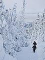 Ski dans les Chic-Chocs.jpeg