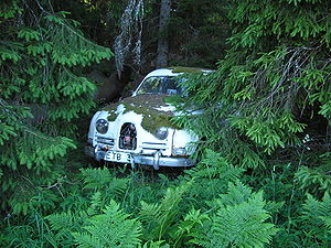 An old two-stroke SAAB 96 sleeping in the forest.
