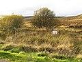 Sleepy Well - geograph.org.uk - 274540.jpg