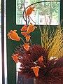Solanum mammosum 2.jpg