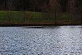 Sommersbergsee 78760 2014-11-15.JPG