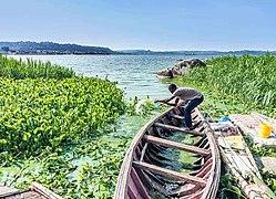 Ssese-islands-uganda.jpg