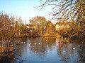 Stamford Green pond - geograph.org.uk - 1756891.jpg