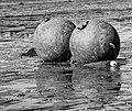 Steel Mooring Buoys (17115159806).jpg