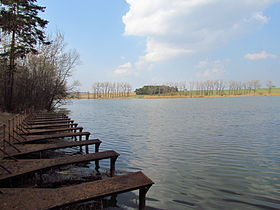Steklý pond near Hvězdoňovice, Třebíč District.JPG