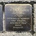 Stolperstein für Käthe Salomon in Hannover.jpg