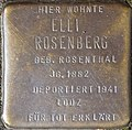 Stumbling block for Elli Rosenberg (Im Dau 12)