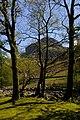 Stonethwaite Beck and Eagle Crag - geograph.org.uk - 233794.jpg