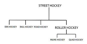 Street hockey - Various forms of street hockey