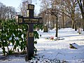 Strindberg grav 2009.jpg