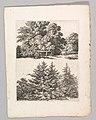 Studienblätter für Landschaftzeichner MET DP820702.jpg