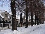 Suchdol - stromořadí lip srdčitých v Gagarinově ulici na Budovci (15).jpg