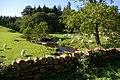 Sunnygill - geograph.org.uk - 242391.jpg