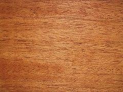 240px-swieteniamacrophyllawood