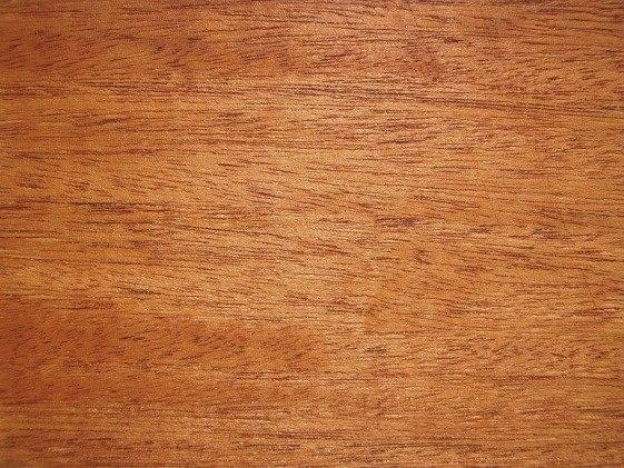 Swietenia macrophylla wood