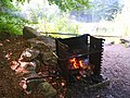 Switzerland fireplace in the forest near a lake.jpg