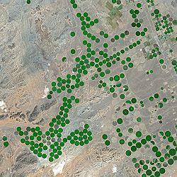 الزراعة في السعودية ويكيبيديا