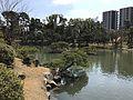 Takueichi Pond in Shukkei Garden 12.jpg