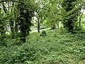 Talus Grands Chemins Fontenay Bois 9.jpg