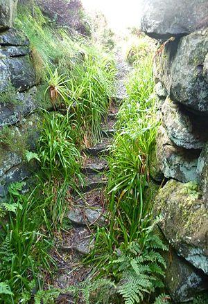 Tappoch Broch - Image: Tappoch broch stairs 093010