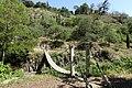 Tbilisi Botanical Garden 4.jpg