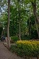 Temps de Flors 2015 (2015-05-15 17.39.21 by Francesc Genove).jpg