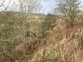 The Erring Burn upstream of Keepwick Mill - geograph.org.uk - 613559.jpg