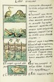 The Florentine Codex- Birds and Fish I.tiff