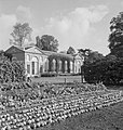 The Gardens of Kew- the work of Kew Gardens in Wartime, Surrey, England, UK, 1943 D16519.jpg