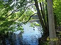 The Lawrence Brook, Monmouth Junction, New Jersey USA May 2013 - panoramio (13).jpg