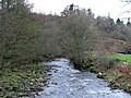 The River West Allen downstream of the bridge at Wide Eals - geograph.org.uk - 622620.jpg