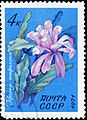 The Soviet Union 1971 CPA 4082 stamp (Cactus Epiphyllum) cancelled.jpg