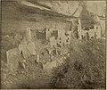 The World's Columbian exposition, Chicago, 1893 (1893) (14780350482).jpg
