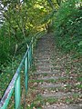 The Yearl steps - geograph.org.uk - 571345.jpg